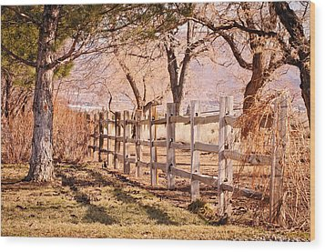 Wood Print featuring the photograph Horsemans Park Reno Nevada by Janis Knight