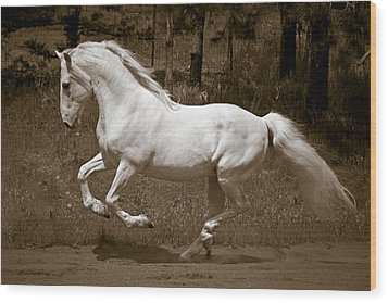 Horsepower Wood Print by Wes and Dotty Weber