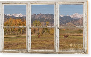 Horses And Autumn Colorado Front Range Picture Window View Wood Print by James BO  Insogna