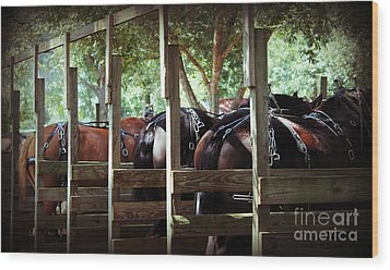Wood Print featuring the photograph Horses Arse by Maddalena McDonald