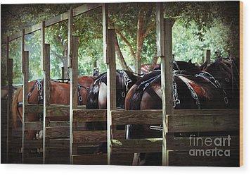 Horses Arse Wood Print
