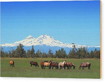 Horses At Sisters Mountain Wood Print