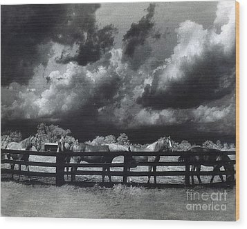 Horses Black And White Infrared Stormy Sky Nature Landscape Wood Print by Kathy Fornal