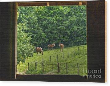 Horses Feeding In Field Wood Print by Dan Friend