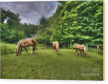 Horses Grazing In Field Wood Print by Dan Friend