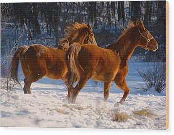 Horses In Motion Wood Print