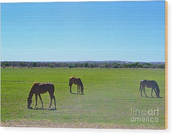 Wood Print featuring the photograph Horses In New Mexico by Utopia Concepts