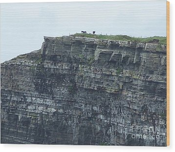 Horses On Cliff Wood Print
