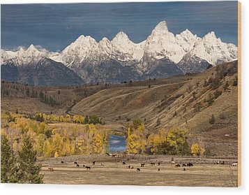Horses On The Gros Ventre River Wood Print