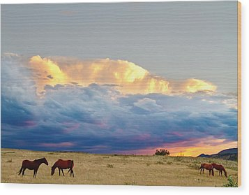 Horses On The Storm Wood Print by James BO  Insogna