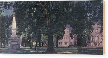 Horseshoe At University Of South Carolina Mural Wood Print