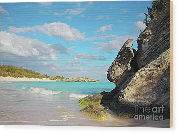 Horseshoe Bay In Bermuda Wood Print by Charline Xia