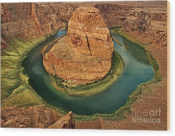 Horseshoe Bend Wood Print by Roman Kurywczak