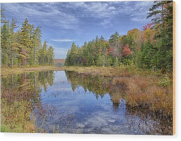 Horseshoe Lake Hdr 01 Wood Print