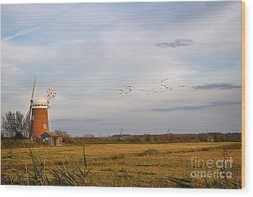 Horsey Windmill In Autumn Wood Print by Louise Heusinkveld