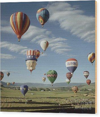 Hot Air Balloon Wood Print by Jim Steinberg