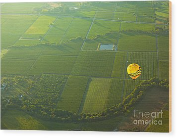 Hot Air Balloon Over Napa Valley California Wood Print by Diane Diederich