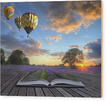 Hot Air Balloons Lavender Landscape Magic Book Pages Wood Print by Matthew Gibson