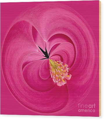 Hot Pink And Round Wood Print by Anne Gilbert