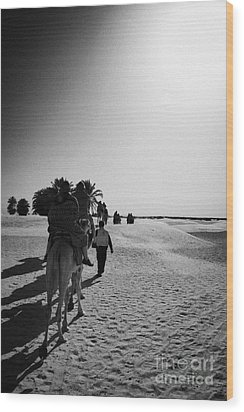 hot sun beating down on tourists taking a camel ride into the sahara desert at Douz Tunisia Wood Print by Joe Fox