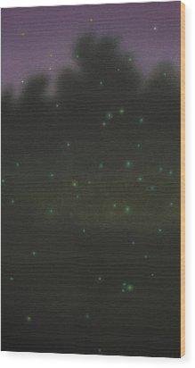Hotarugari Iv Wood Print