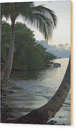 Hotel Molokai Beach Wood Print by Terry Holliday