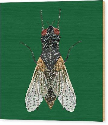 House Fly In Green Wood Print by R  Allen Swezey