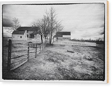 House In The Field Wood Print by John Rizzuto