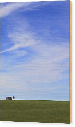 House On The Hill Wood Print by Mike McGlothlen