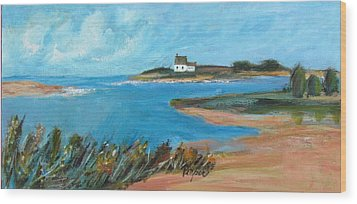 House On The Point Wood Print by Betty Pieper
