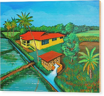 House With A Water Pump Wood Print