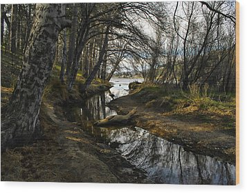 Houston Creek Wood Print