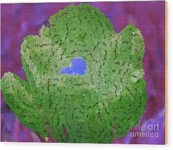 How Things Were Purple Green Blue Wood Print by Holley Jacobs