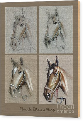 How To Draw A Horse Portrait Wood Print by Daliana Pacuraru