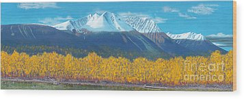 Wood Print featuring the painting Hudson Bay Mountain by Stanza Widen