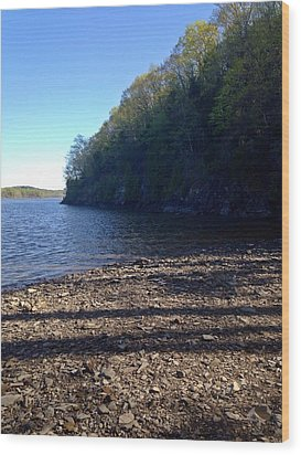 Hudson River Shoreline Wood Print