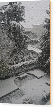 Huge Snowflakes Wood Print by Giuseppe Epifani