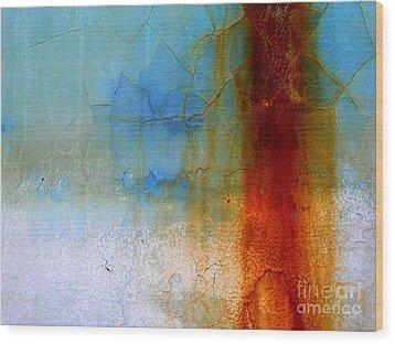 Hull Textures Wood Print by Robert Riordan