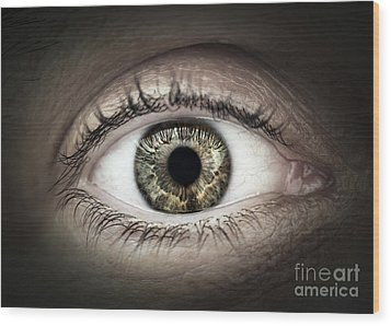 Human Eye Macro Wood Print by Elena Elisseeva