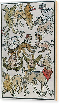 Human Monsters 1493 Wood Print by Photo Researchers