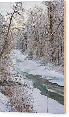 Humber River Winter Wood Print by Steve Harrington