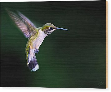Hummer Ballet 2 Wood Print by ABeautifulSky Photography