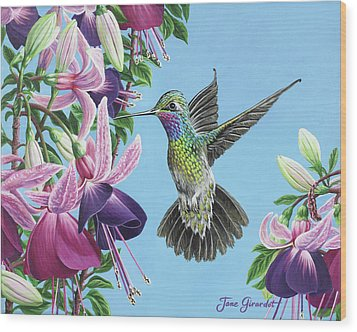 Hummingbird And Fuchsias Wood Print