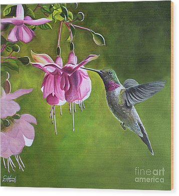 Wood Print featuring the painting Hummingbird And Fuschia by Debbie Hart