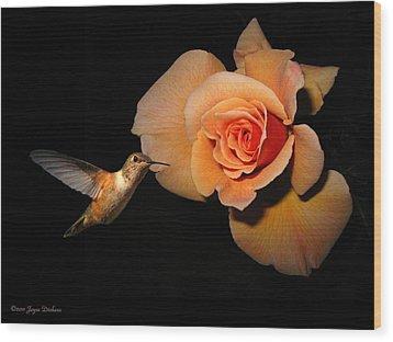 Hummingbird And Orange Rose Wood Print by Joyce Dickens