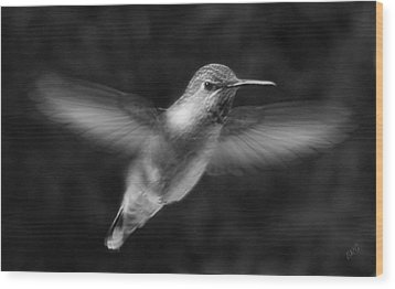 Hummingbird Wood Print by Ben and Raisa Gertsberg