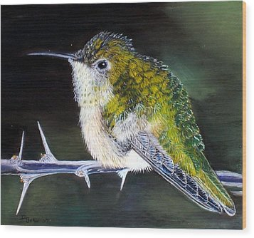 Wood Print featuring the painting Hummingbird by Debbie Baker