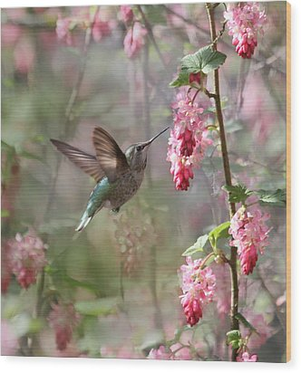Hummingbird Heaven Wood Print by Angie Vogel