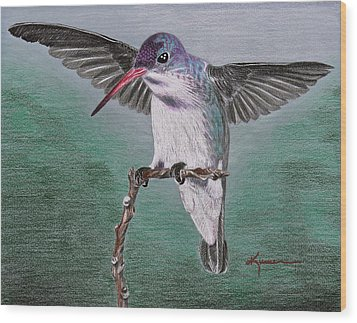 Wood Print featuring the drawing Hummingbird by Kume Bryant