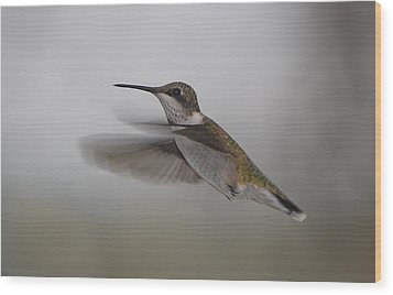 Wood Print featuring the photograph Hummingbird  by Leticia Latocki